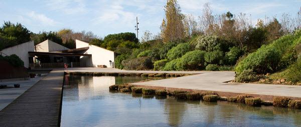 Visiter le jardin botanique de Barcelone